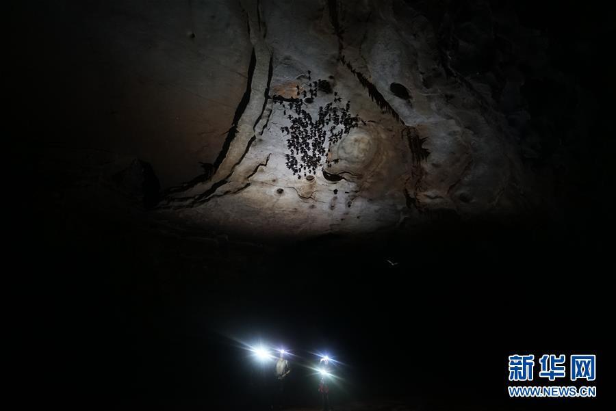 (科技)(4)跨国探险队在广西东兰发现大型天坑