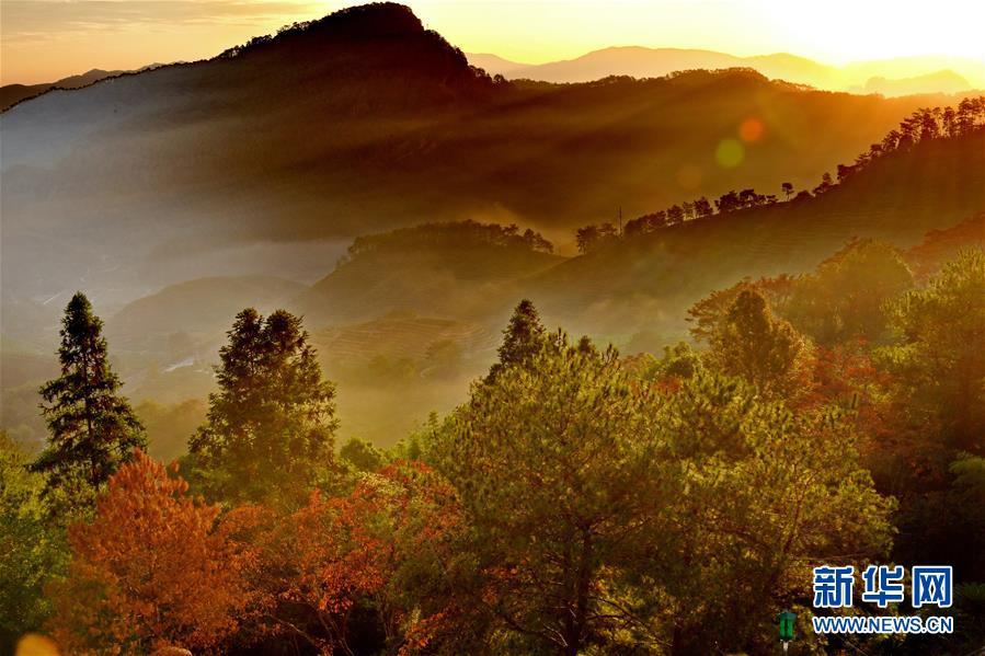 (环境)(9)福建武夷山:世界遗产 绿水青山