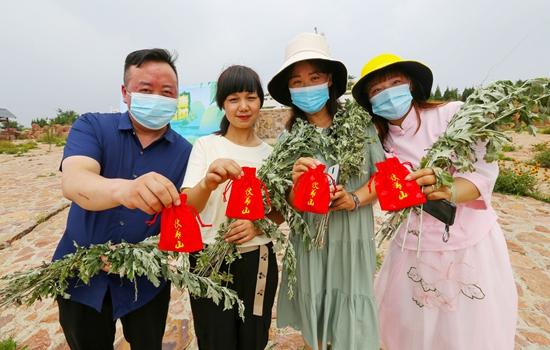 河南新密:千斤野生艾草免费发放 祝福大家健康平安